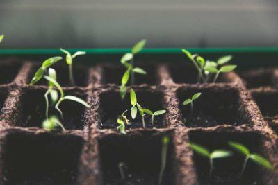 settimana sri 2020 investimenti sostenibili e responsabili