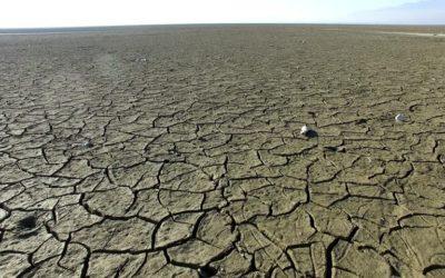 fame nel mondo climate change
