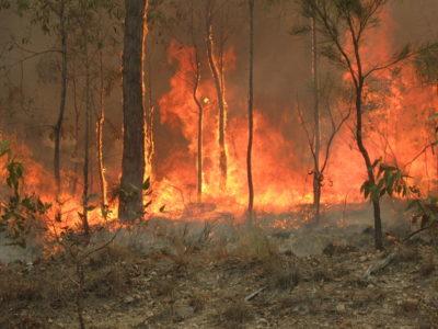 incendi-in-australia