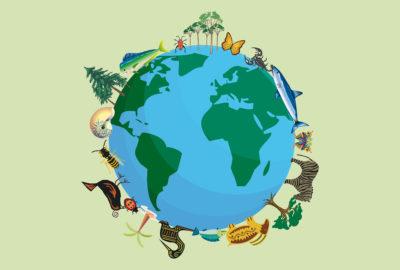 diversità biologica